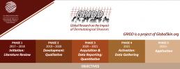 GRIDD Infographic